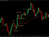 trading forex dan crypto